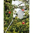 Obstpflücker Teleskop